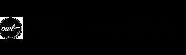 堺市の整体なら「OWL(アウル)整体院 」 ロゴ